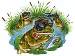 illustrator of frogs images and art